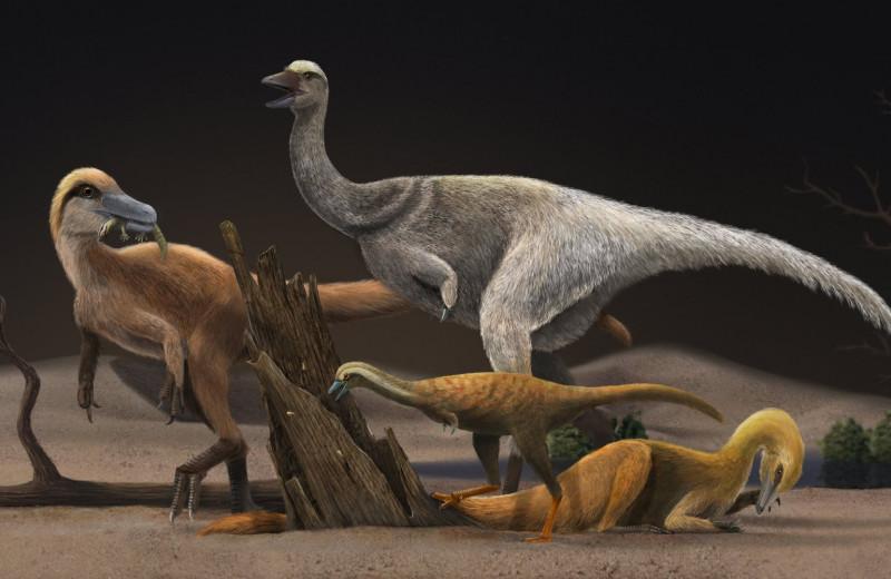 Почему этот динозавр стал таким маленьким? Всему виной муравьиная диета