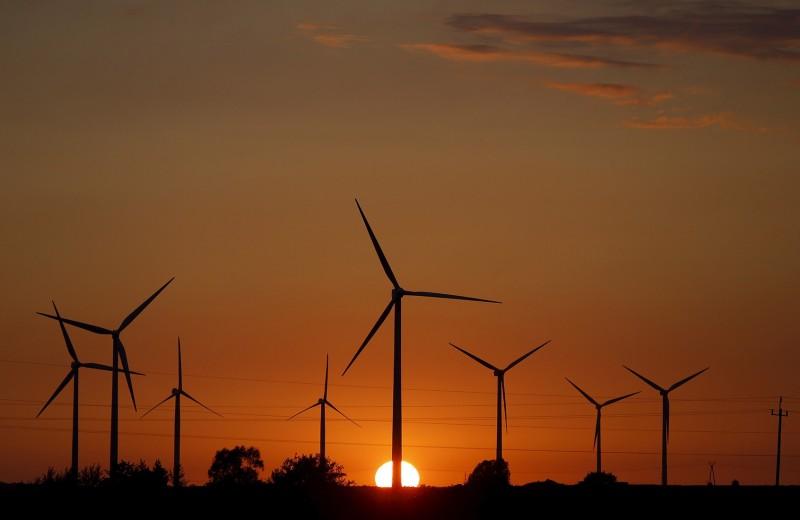 Чистая и гордая: зеленая энергетика больше не нуждается в государственных субсидиях