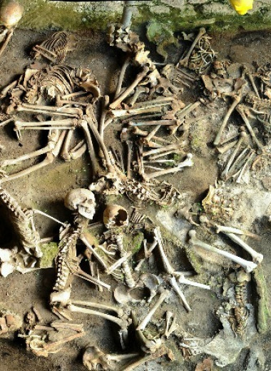Антропологи выявили различия в питании у жертв извержения Везувия