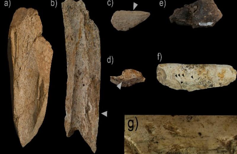 Археологи нашли охотничий лагерь испанских неандертальцев