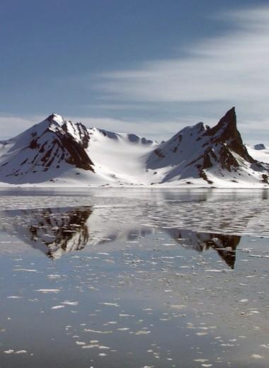 Арктика: как туда попасть, кого там можно встретить и как там вообще выжить