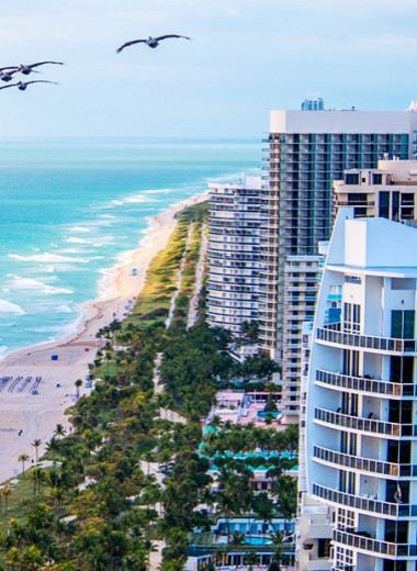 Где есть и пить в Бал-Харбор — самом изысканном районе Майами-Бич
