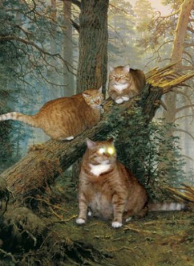 Пушистая чума XXI века. Как коты захватили мир и Интернет