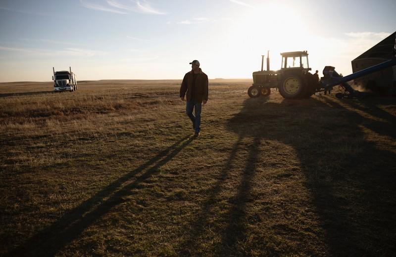 Cвиньи и тракторы вместо йоги и медитации: как фермерство превратилось в любимое хобби финансистов
