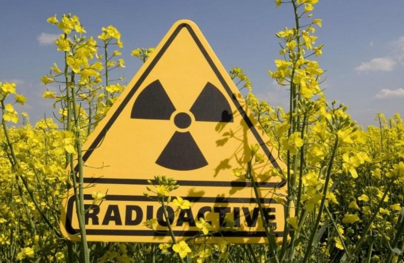 Радиация внутри нас: почему мы ежедневно облучаемся
