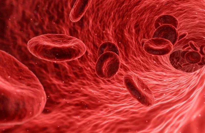 В России создали новое средство для лечения заражения крови