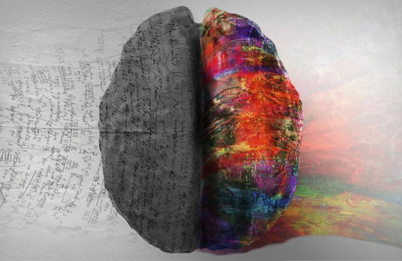 Эмоцио VS рацио: как найти золотую середину