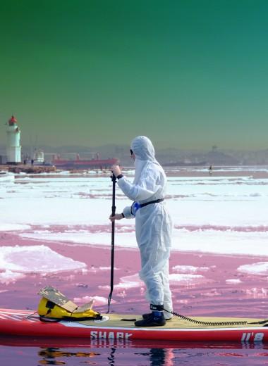 Как пандемия коронавируса повлияла (и повлияет в будущем) на экологию: 5 вещей, которые нужно знать