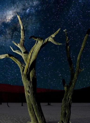 Красота неземная: где лучше всего на нашей планете наблюдать звездное небо