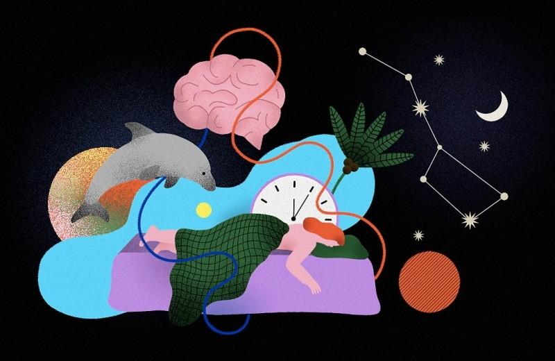 Как настроить здоровый сон: подробный путеводитель