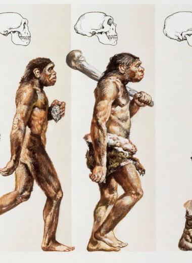 10 самых нелепых научных мифов