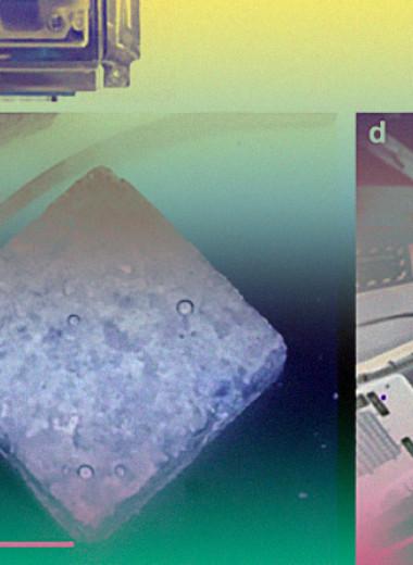 Бактерии добыли редкоземельные металлы из базальта на борту МКС