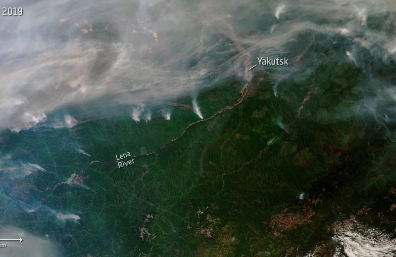 Пылающая Сибирь: почему горят леса и каков масштаб катастрофы