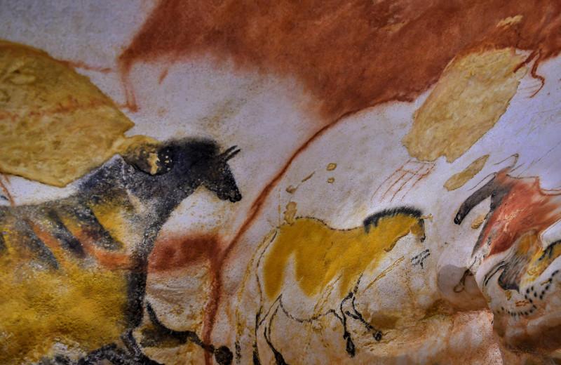 Археолог случайно открыл, как наскальные рисунки превращаются в первобытные мультики
