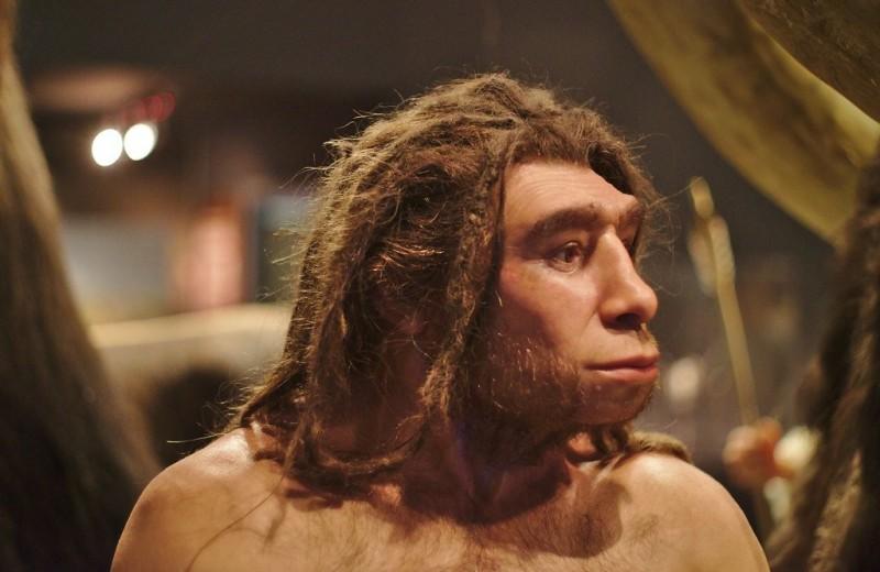Неандертальцы могли быть более чувствительны к боли, чем современные люди