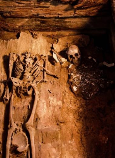 В Хакасии обнаружили женский скелет и погребальную «куклу» в могиле таштыкской культуры