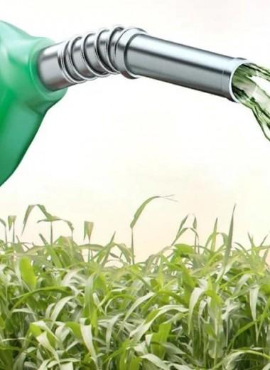 В России создали установку, ускоряющую получение биогаза из отходов