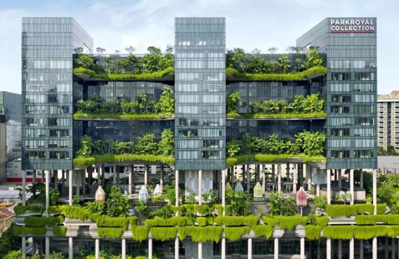 Что такое устойчивая архитектура, и почему «зеленые» здания не всегда покрыты растениями
