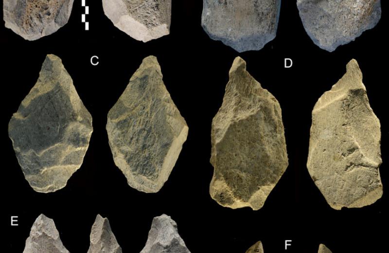 Работу на конвейере придумали неандертальцы