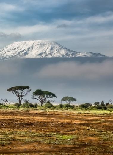В Африке найдена четвертая ветвь человечества