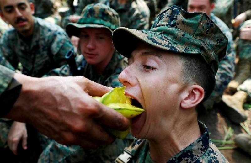 Война войной: что входит в сухой паек армий мира