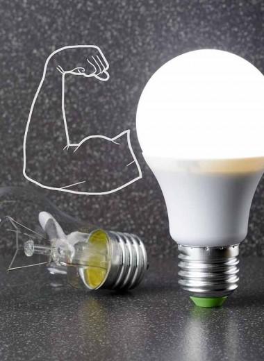 Считаем киловатты: какие энергосберегающие лампочки лучше для дома?