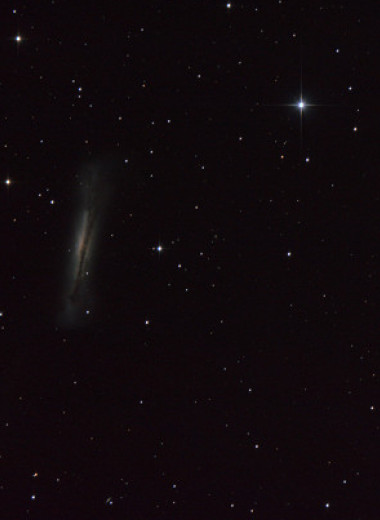Что наблюдать на небе в феврале: «весенние» галактики и Веста во Льве