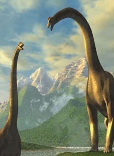 Российские ученые нашли скелет гигантского динозавра на берегу Волги