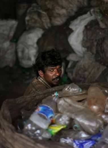 Кто такие индийские неприкасаемые и можно ли их трогать