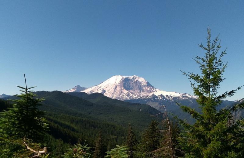 Одна вокруг света: горы, леса и таблички «не входить»