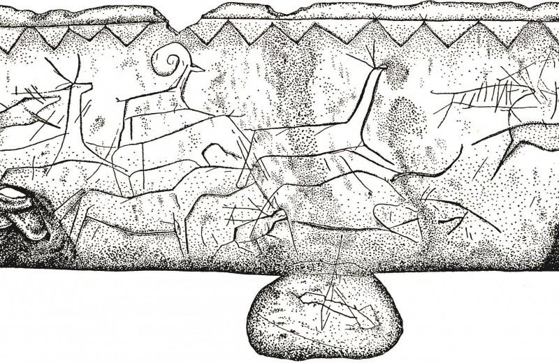 Каких собак предпочитали древние люди: новое исследование