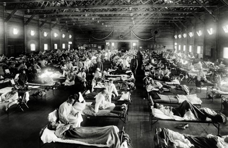 Главный злодей в триллере о пандемии — банальный грипп. Фрагмент из книги «Следующая пандемия»