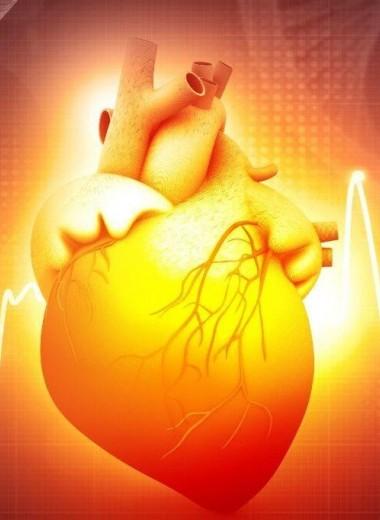 Новый алгоритм создает модель активности сердца для каждого человека