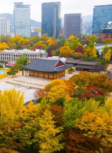 Что нужно увидеть в Сеуле: 10 советов