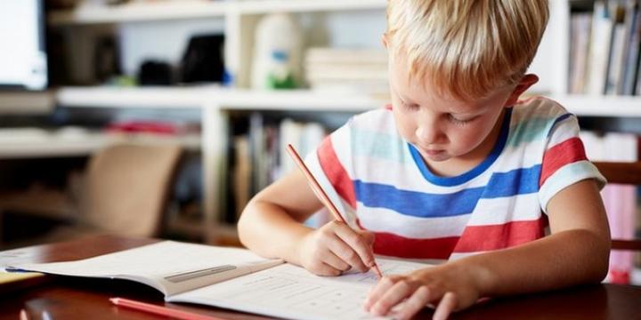 Анскулинг: учеба без обязательств