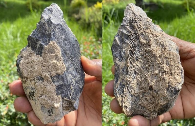 Палеоантропологи нашли ашельское рубило из бедренной кости бегемота