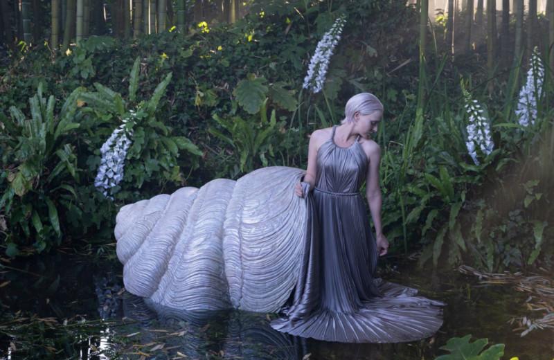 «Вечный свет» и другое модное кино