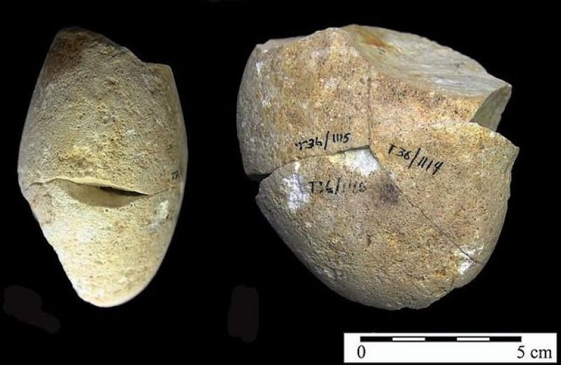 В Израиле нашли самый древний инструмент. Его возраст – 350000 лет!