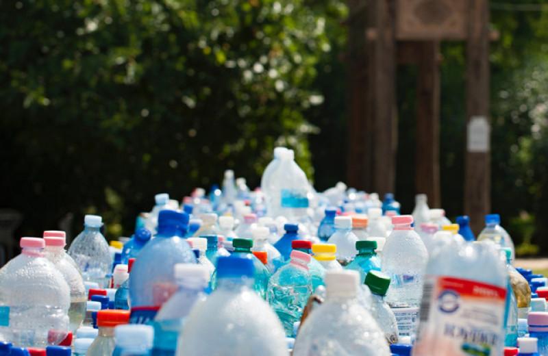 Может ли экологичный бизнес быть прибыльным в России? 6 факторов, на которые надо обратить внимание