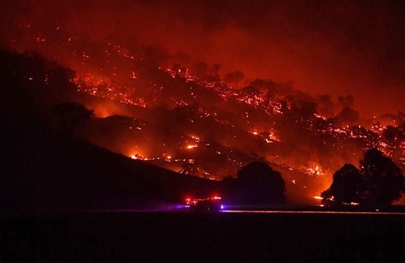 Глобальное потепление в режиме онлайн. Почему на Севере нет снега, а Австралию уничтожают пожары