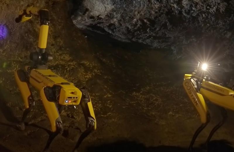 Spot собирается на Марс, искать жизнь в марсианских пещерах. Главные новости за 12 августа