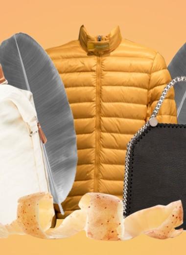 Куртка из бананов, сумка из грибов: как растения превращаются в одежду