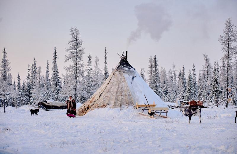 Путешествие на Ямал: почувствуй гармонию Арктики