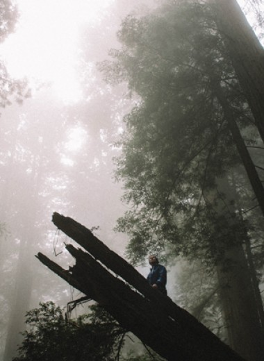 Василий Кондратьев: В лесу, который склоном шел к берегу…