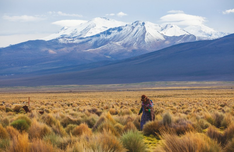 Пожиратели сердец из Боливии