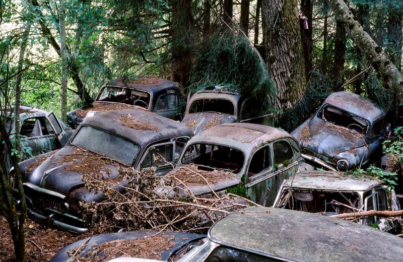 Автомобильные кладбища России: что там можно найти интересного