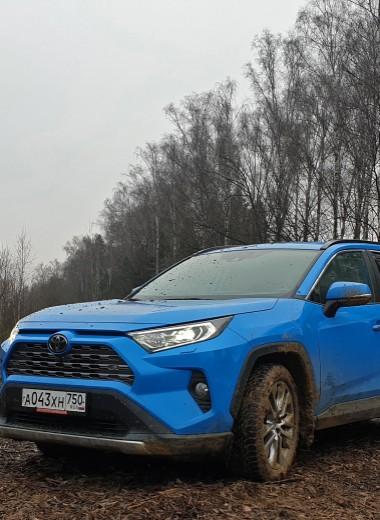 Из князи в грязи: тест Toyota RAV4