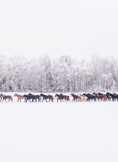 Зима в России будет теплее обычного