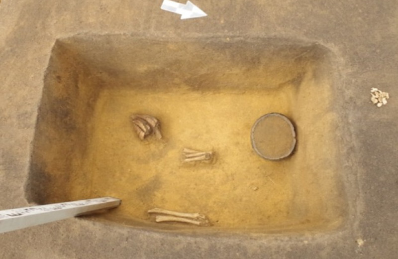 Челябинские археологи нашли 17 младенческих погребений бронзового века