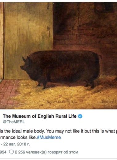 Музеи и библиотеки мира весь день публиковали мемы – вот 10 лучших